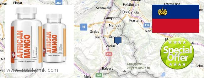 Where to Buy African Mango Extract Pills online Liechtenstein
