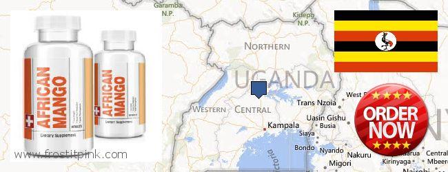 Purchase African Mango Extract Pills online Uganda