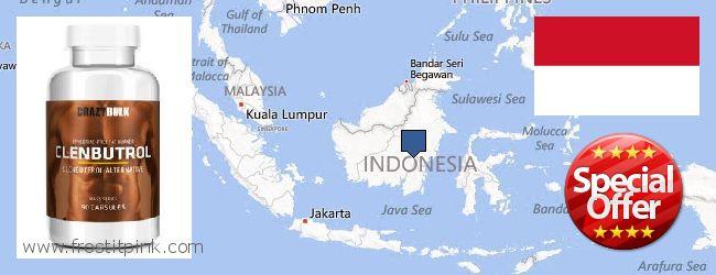 Къде да закупим Clenbuterol Steroids онлайн Indonesia