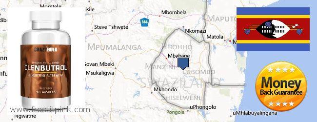 Къде да закупим Clenbuterol Steroids онлайн Swaziland