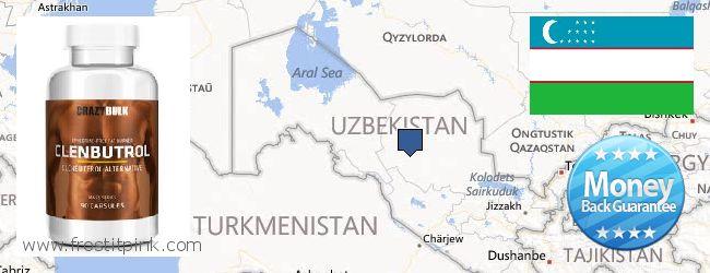 Where Can I Purchase Clenbuterol Steroids online Uzbekistan