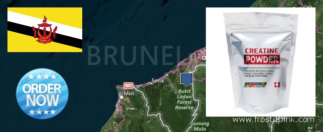 Where to Buy Creatine Monohydrate Powder online Brunei