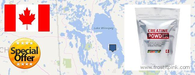 Where to Buy Creatine Monohydrate Powder online Winnipeg, Canada