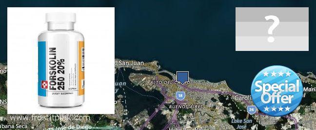 Where to Buy Forskolin Extract online Carolina, Puerto Rico