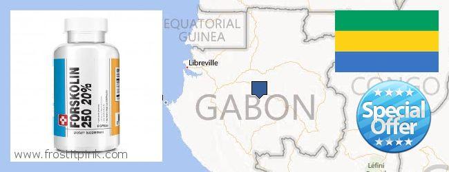 Where to Buy Forskolin Extract online Gabon