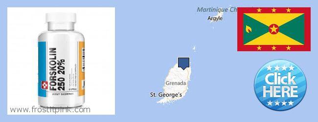 Къде да закупим Forskolin онлайн Grenada