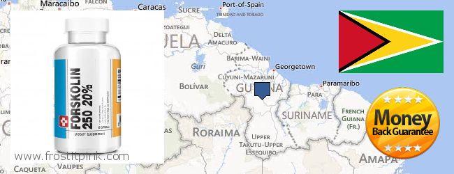 Where to Buy Forskolin Extract online Guyana