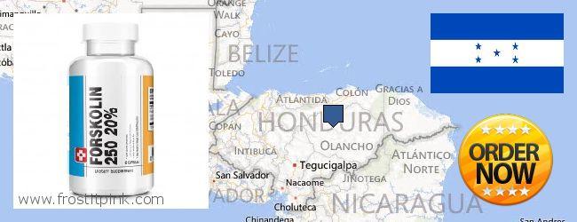 Purchase Forskolin Extract online Honduras