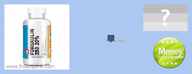 Where to Buy Forskolin Extract online Tokelau