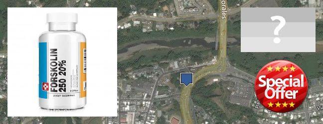 Where Can I Purchase Forskolin Extract online Trujillo Alto, Puerto Rico