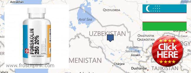 Buy Forskolin Extract online Uzbekistan