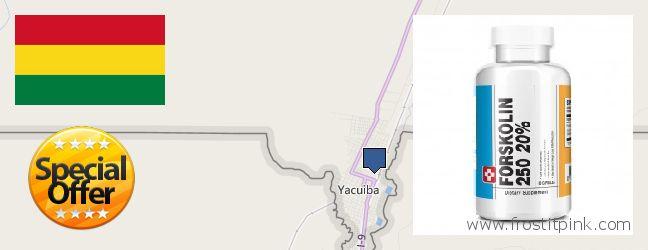 Where to Buy Forskolin Extract online Yacuiba, Bolivia