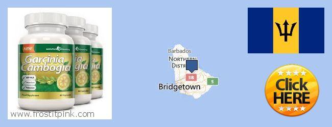 Purchase Garcinia Cambogia Extract online Barbados