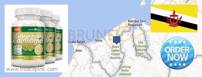 Where to Buy Garcinia Cambogia Extract online Brunei