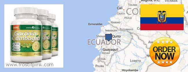 Where to Purchase Garcinia Cambogia Extract online Ecuador
