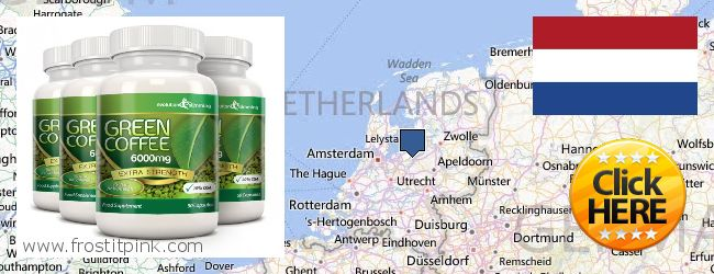Where to Purchase Green Coffee Bean Extract online Netherlands