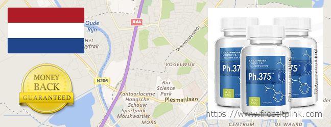Where to Buy Phen375 online Leiden, Netherlands
