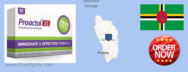 Buy Proactol Plus online Dominica