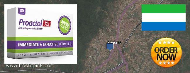 Where Can You Buy Proactol Plus online Kenema, Sierra Leone