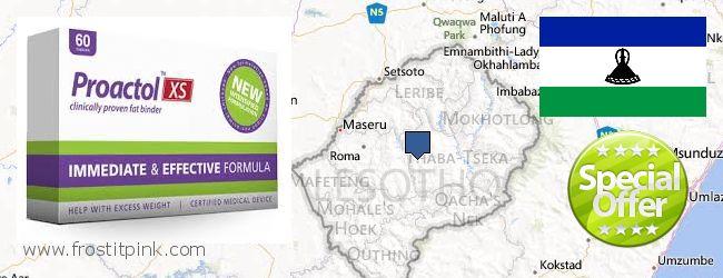 Purchase Proactol Plus online Lesotho