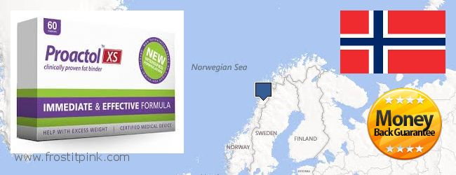 Best Place to Buy Proactol Plus online Norway