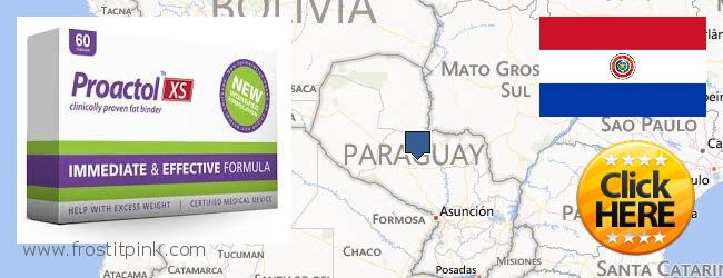 Where Can You Buy Proactol Plus online Paraguay