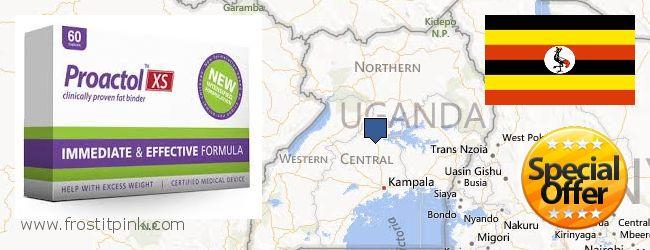 Where Can I Buy Proactol Plus online Uganda