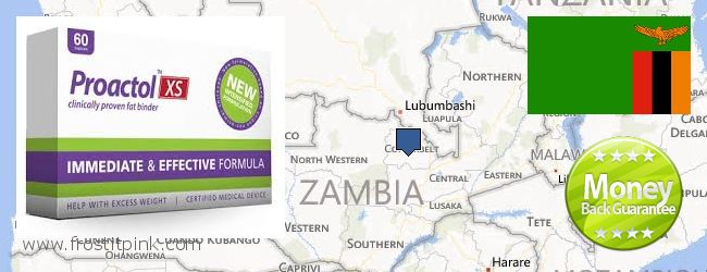 Where Can I Purchase Proactol Plus online Zambia