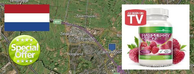 Where to Buy Raspberry Ketones online Amersfoort, Netherlands