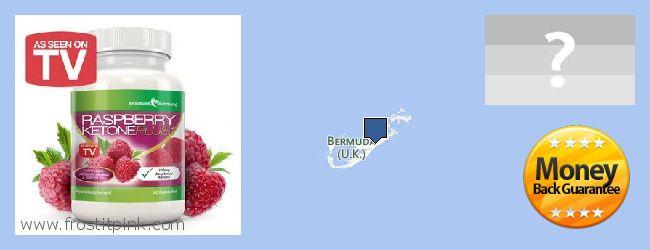 Where to Buy Raspberry Ketones online Bermuda