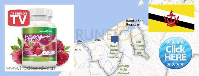 Where to Buy Raspberry Ketones online Brunei