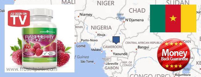 Best Place to Buy Raspberry Ketones online Cameroon