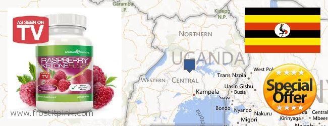 Best Place to Buy Raspberry Ketones online Uganda