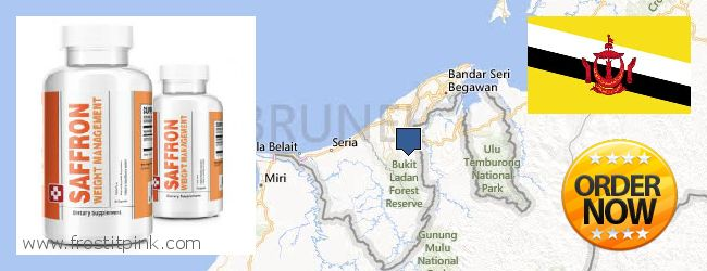 Where to Buy Saffron Extract online Brunei