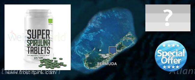 Where to Buy Spirulina Powder online Bermuda