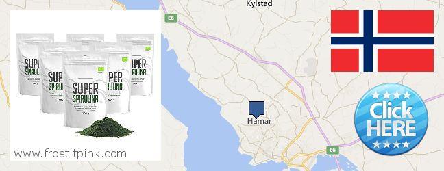 Where to Buy Spirulina Powder online Hamar, Norway
