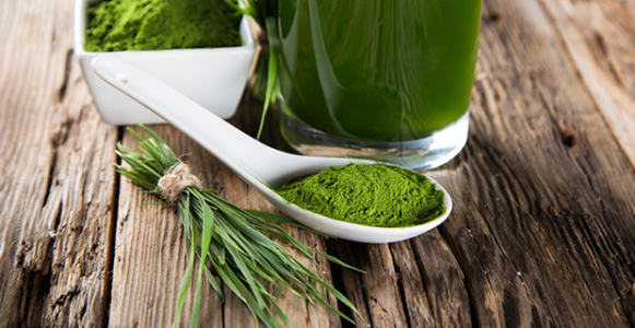 Where to Buy Spirulina Powder in Bangladesh